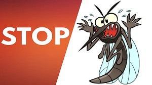 Scared mosquito